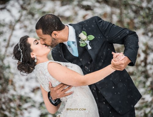 Winter Wonderland Snow Wedding, Baltimore's Best Events, Townson MD ~ Aline + Charles