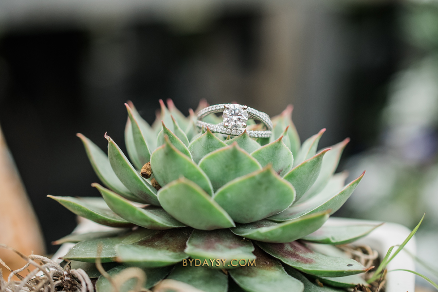 close up engagement ring on a succulent