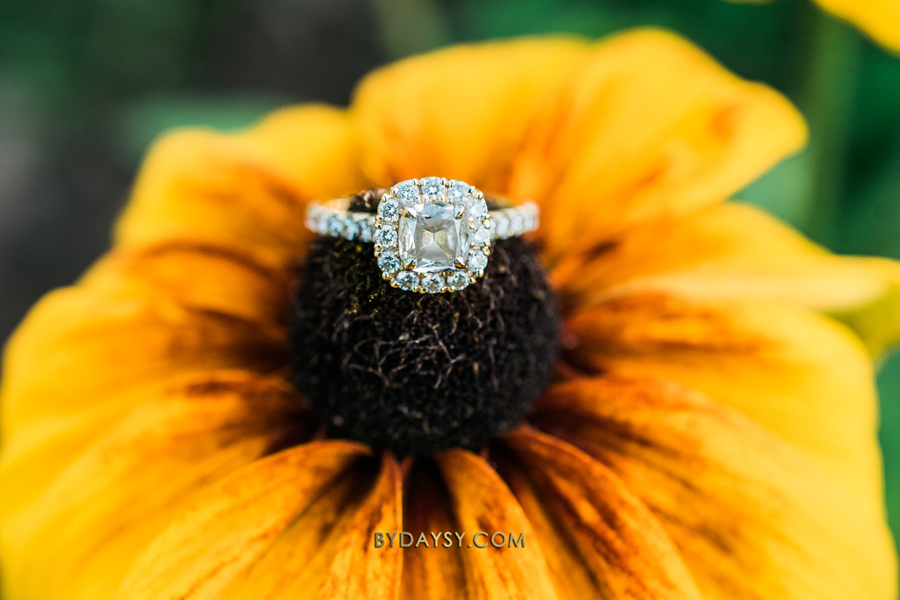 close up engagement ring on a sunflower at green spring gardens park alexandria VA