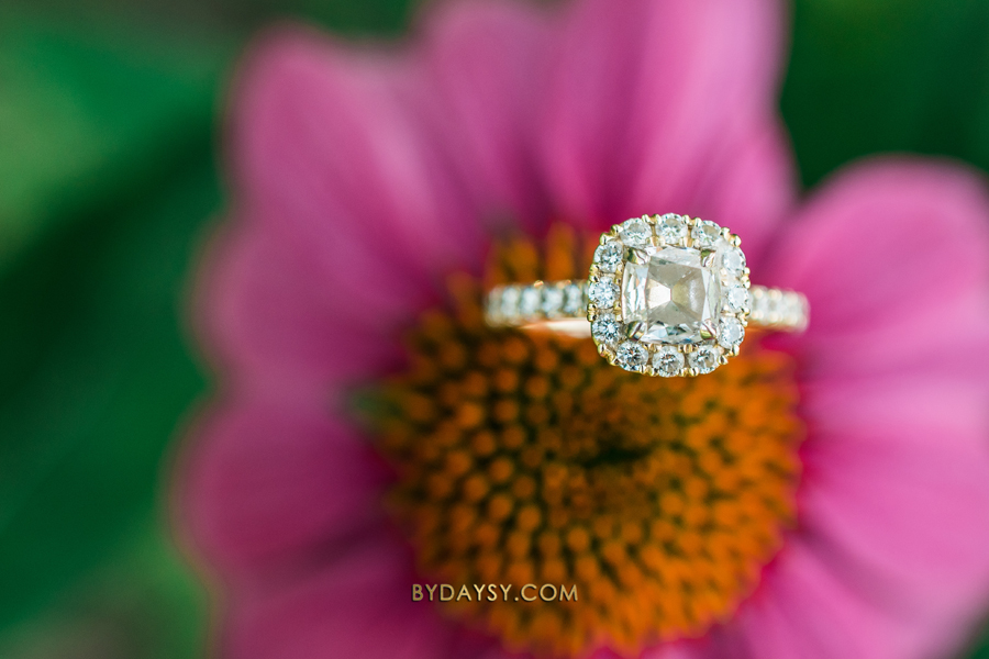 close up engagement ring on a pink and yellow flower at green spring gardens park alexandria VA